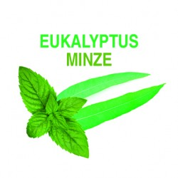 EUKALYPTUS - MINZE  Saunakonzentrat