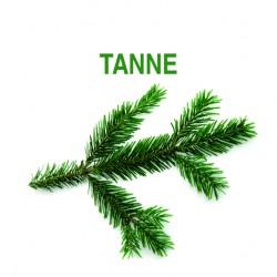 TANNE Saunakonzentrat